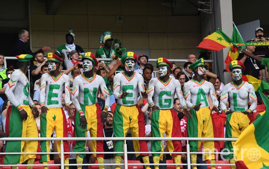 Болельщики из Сенегала на ЧМ-2018. Фото AFP