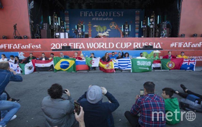 Фанаты футбола выстроились с флагами своих стран. Фото Пресс-центр Фестиваля болельщиков ФИФА
