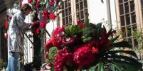 Овощные букеты, мини-сады и море цветов: В Летнем саду открылся фестиваль