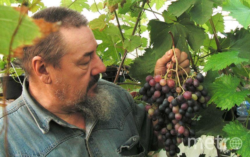 Василий Храбров.