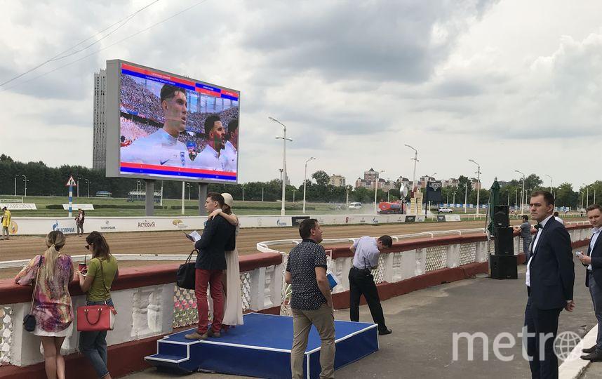 Московский ипподром. Фото пресс-служба Центрального Московского ипподрома
