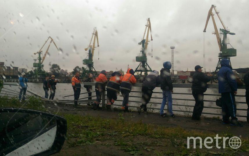 Фото с места происшествия на Канонерском острове. Фото vk.com