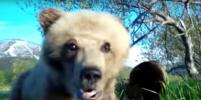 В заповеднике на Камчатке медвежонок сделал селфи. Видео