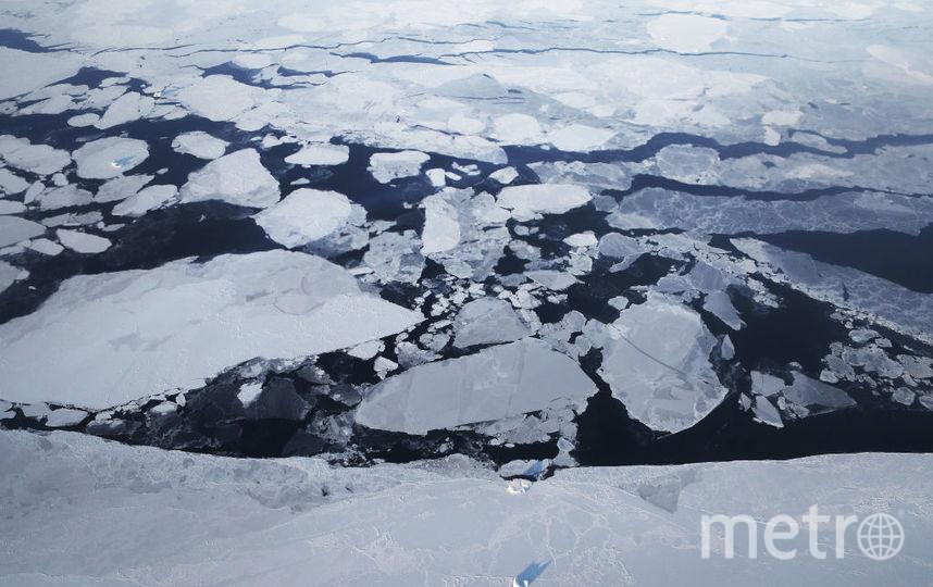 Норвежские учёные прогнозируют климатическую катастрофу в Баренцевом море. Фото Getty