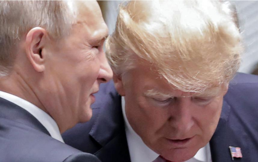 Путин и Трамп на саммите АТЭС во Вьетнаме. Фото AFP