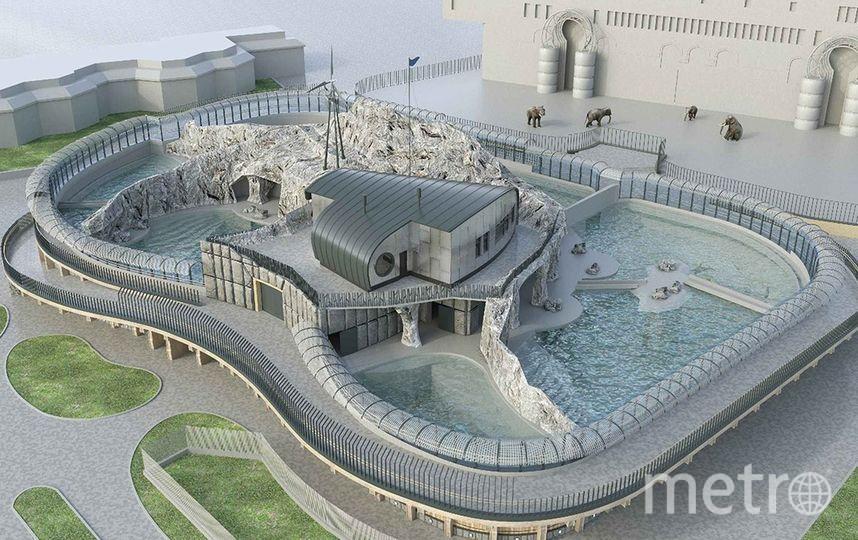 Проект павильона «Ластоногие». Фото Комплекс градостроительной политики и строительства города Москвы