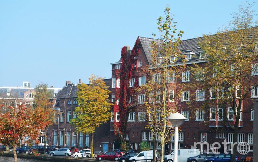 """Амстердам. Фото Алёна Гудеменко, """"Metro"""""""