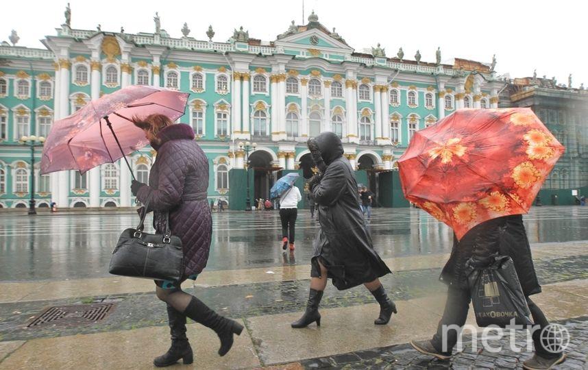 """В Петербурге показали """"превью осени"""", шутят горожане. Фото Интерпресс"""