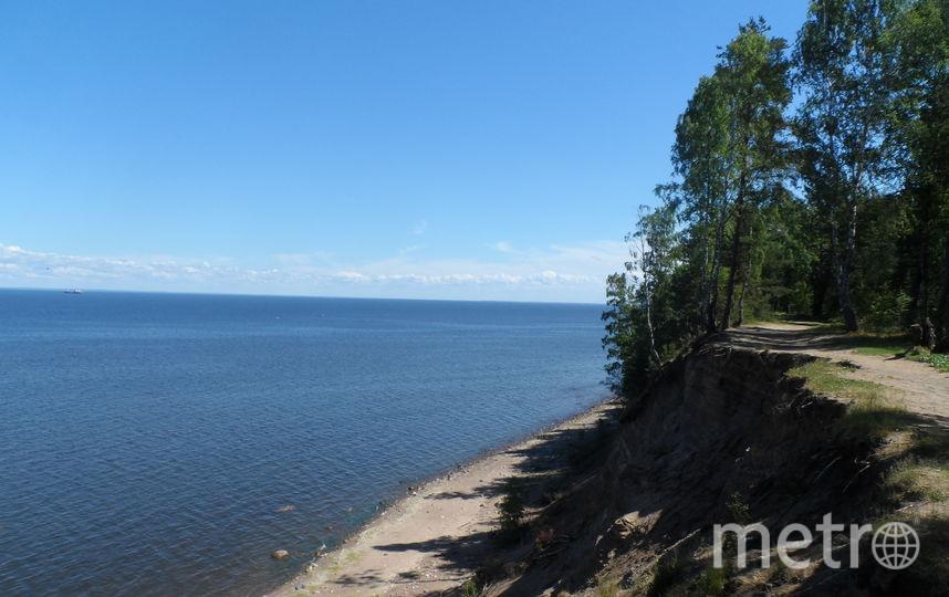 """Выход к Финскому заливу с Форта Красная горка. Фото """"Metro"""""""