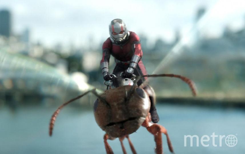 Человек-муравей решил помочь Осе, рискуя снова потерять свободу. Фото WDSSPR, kinopoisk.ru