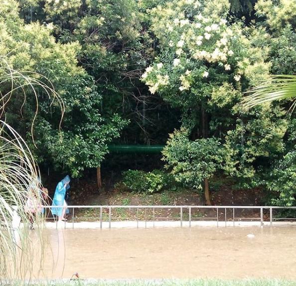 Ливень стал причиной потопа в Адлерском районе Сочи. Фото Скриншот Instagram: info.nunataka