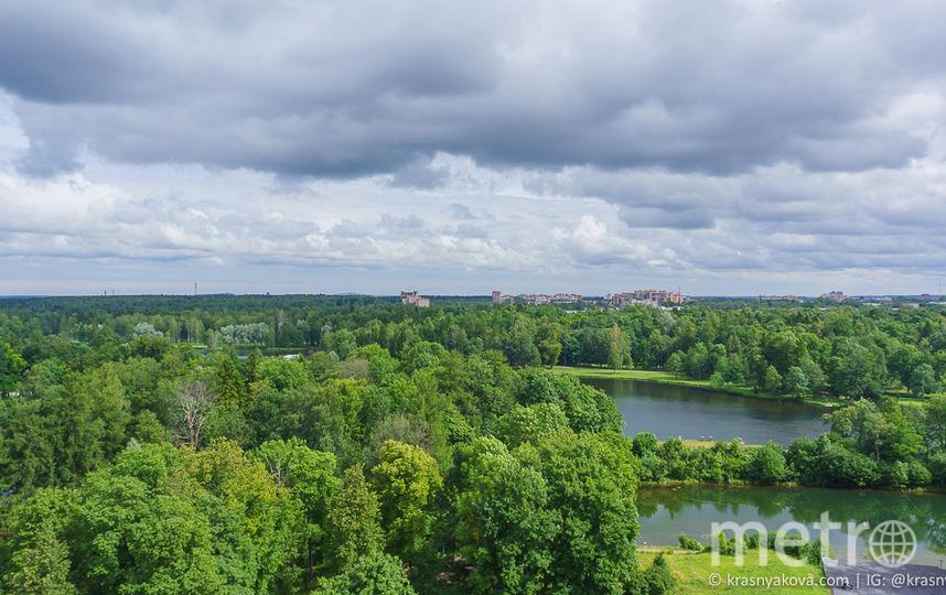 Гатчинский дворец. Вид с Сигнальной башни. Фото https://krasnyakova.com