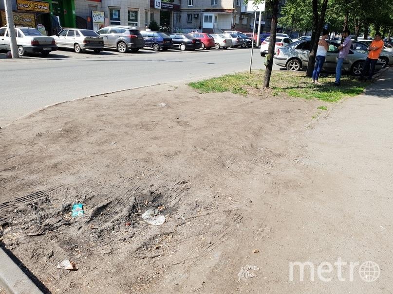 Так выглядел газон до проведения работ... Фото Данил Девятов
