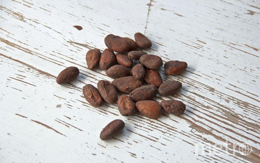Какао-бобы. Фото Pixabay