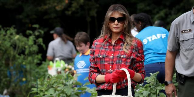 Мелания Трамп собирает зелень на огороде Белого дома.