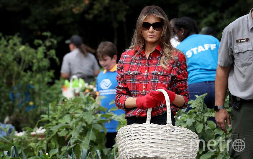 Мелания Трамп собирает зелень на огороде Белого дома. Фото Getty