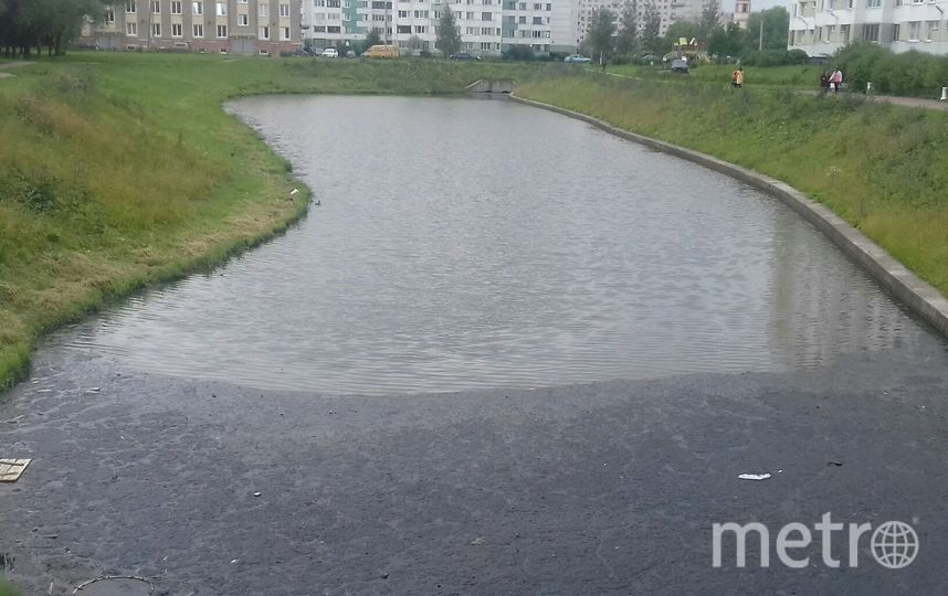 Река Новая. Фото предоставлено активистами