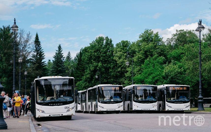 """Автобусы-шаллты. Фото """"Пассажиравтотранс"""""""