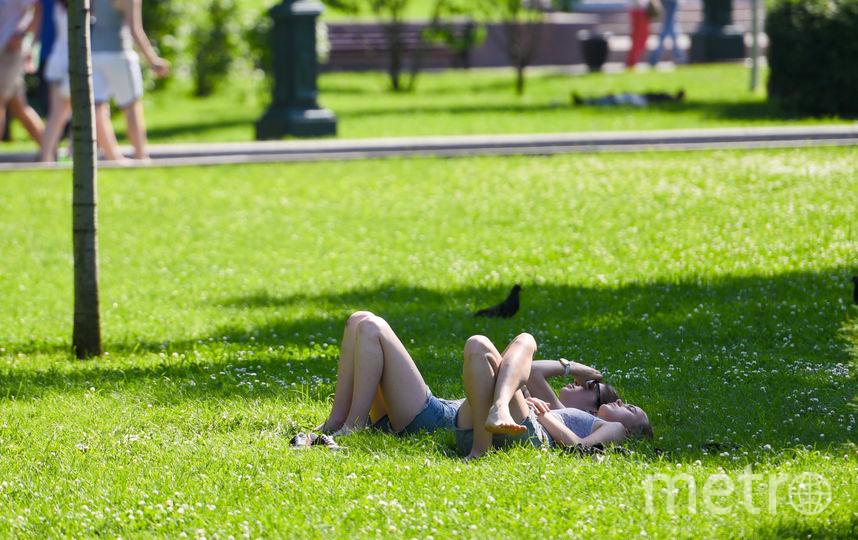 """Спасаться от жары в городе можно в парках. Фото Василий Кузьмичёнок, """"Metro"""""""