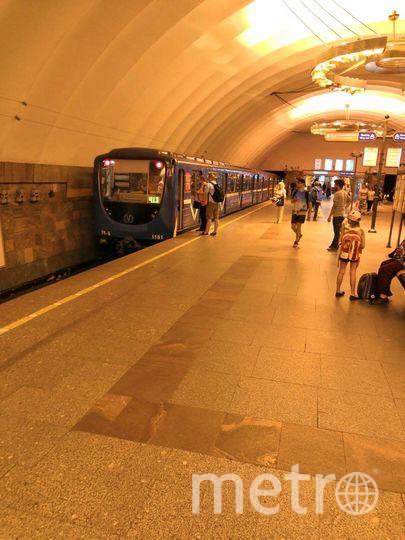 """Поезд стоит на 2 вагона выехав на платформу со стороны пл. Александра Невского"""", - рассказали пассажиры. Фото https://web.telegram.org/#/im?p=@Megapolisonline"""