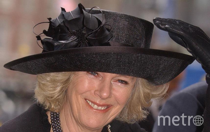 Камилла в 2005 году. Фото Getty