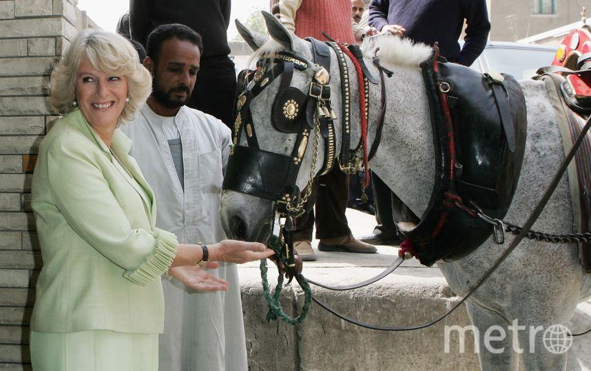Визит в Египет в 2006 году. Фото Getty