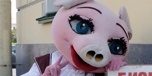 Сергей, 21 год ростовая кукла Свинка.