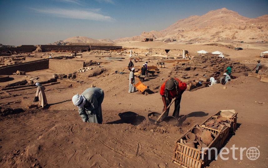 Раскопки. Фото Getty