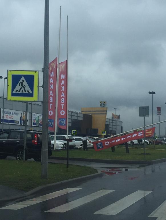 На Пулковском шоссе. Фото https://vk.com/spb_today