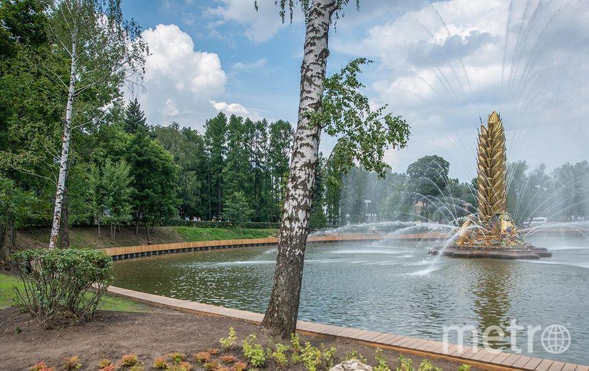 Из Каменского пруда, над которым возвышается фонтан «Золотой колос», убрали 18 тысяч кубометров ила и глины. Фото mos.ru