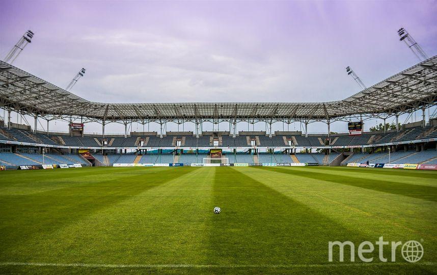 Чемпионат мира по футболу прошел, а котики остались. Фото Pixabay.com