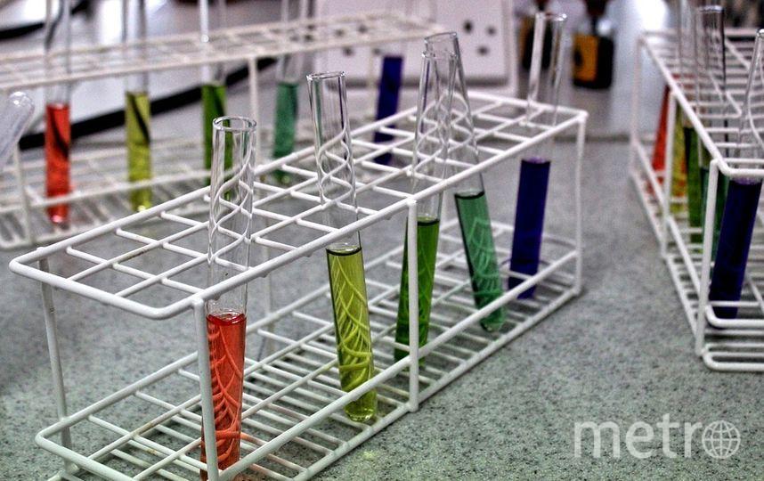 Пробирки в лаборатории. Фото pixabay.com