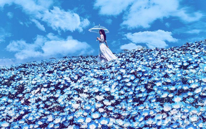Хитатинака, Япония. Фотографии Кристины Макеевой. Фото http://ipai.ru/