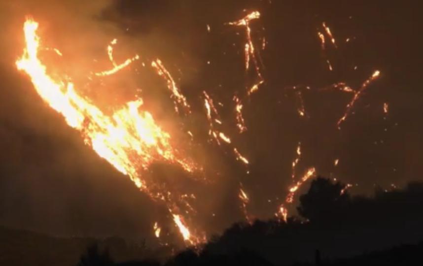 """Число погибших в результате лесных пожаров в Греции выросло до 74 человек. Фото скриншот видео """"РИА Новости""""."""