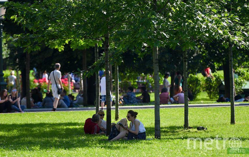 30-градусная жара продержится в Москве до конца недели. Фото Василий Кузьмичёнок