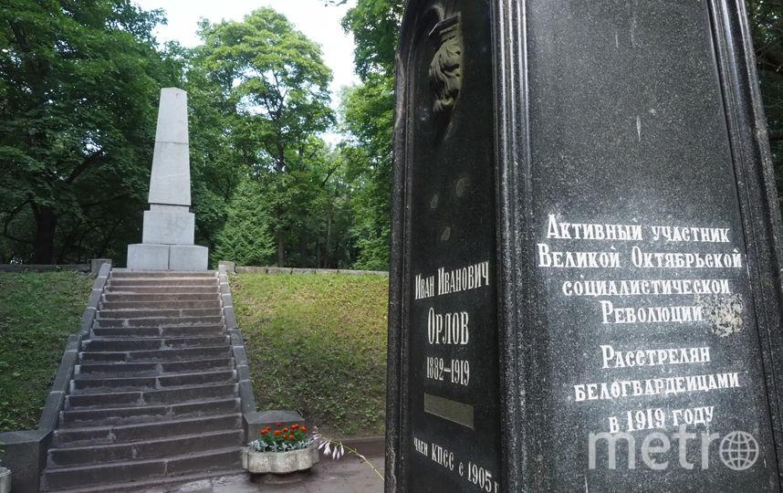 """Революционное захоронение. Парк Лесотехнической академии. Фото Святослав Акимов, """"Metro"""""""