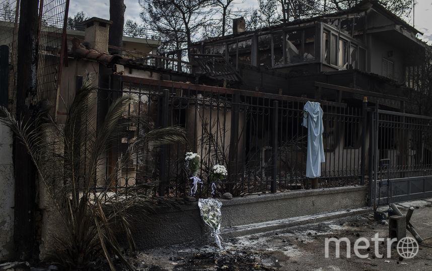 Страшные последствия пожаров в Греции. Фото AFP