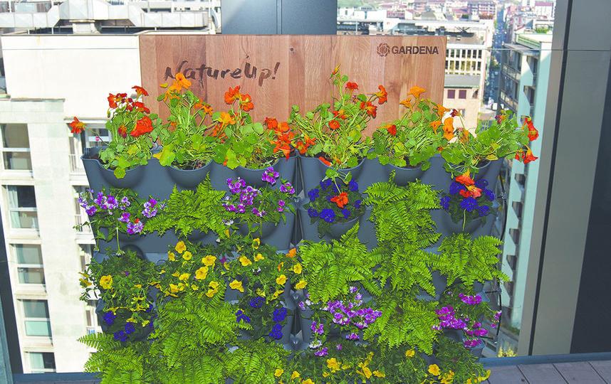 Чем больше цветов вы посадите, тем ярче будет композиция. Фото GARDENA