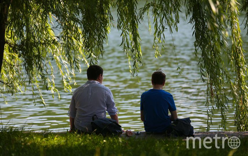 "Парк ""Дружба"", Москва. Фото Василий Кузьмичёнок"