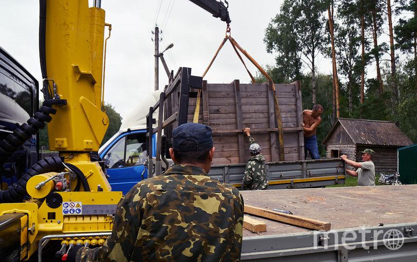 Из Рязнской области зубров отправят в Северную Осетию. Фото Предоставлено организаторами