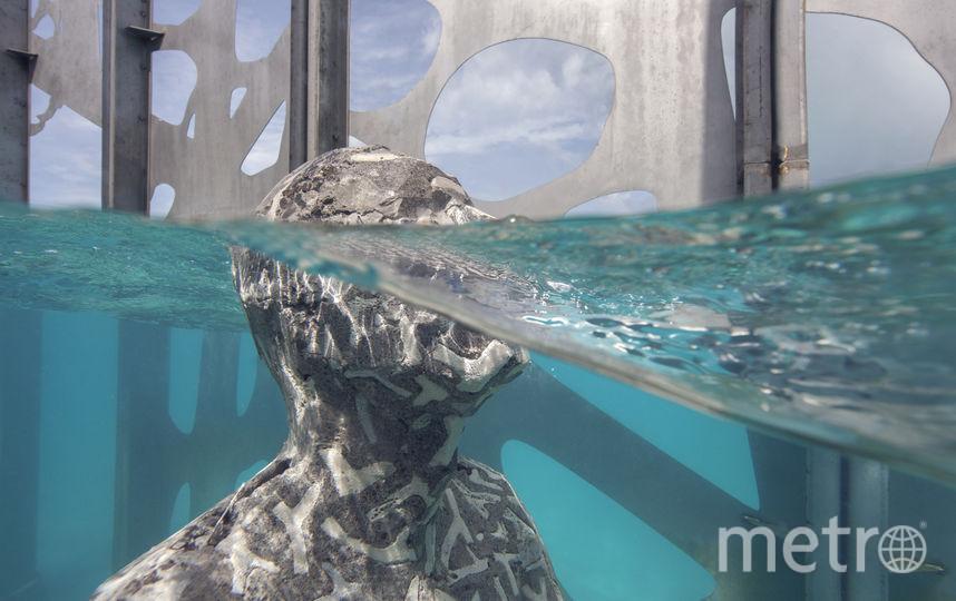 """Подводный музей скульптур открылся на Мальдивах. Фото """"Metro"""""""