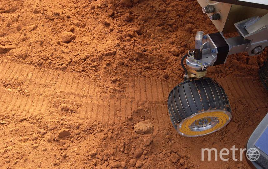 Поверхность планеты Марс. Фото Getty