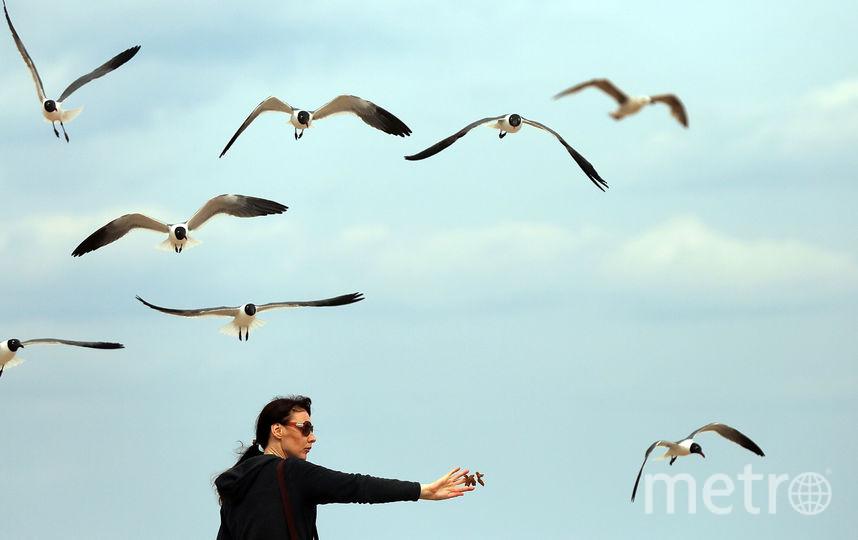 Петербург готовится встречать осень. Фото Getty