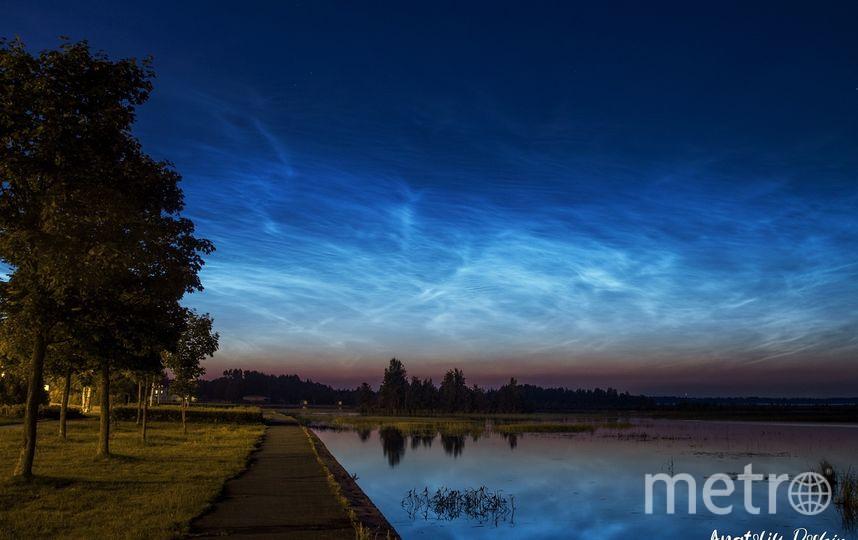 Серебристые облака в Сестрорецке. Фото Анатолий Дошин, vk.com/dam045.