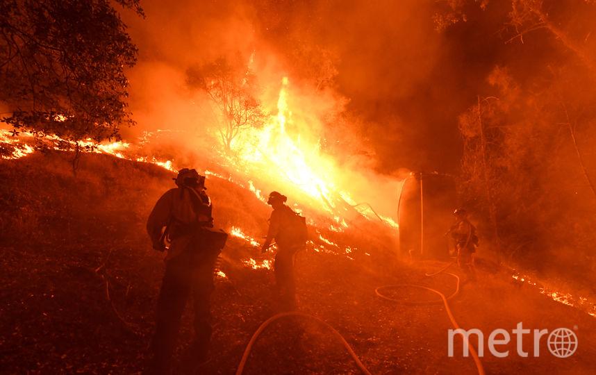 В Калифорнии бушует пожар. Фото AFP