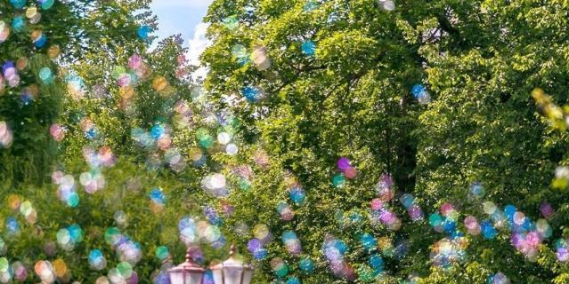 Фестиваль мыльных пузырей.