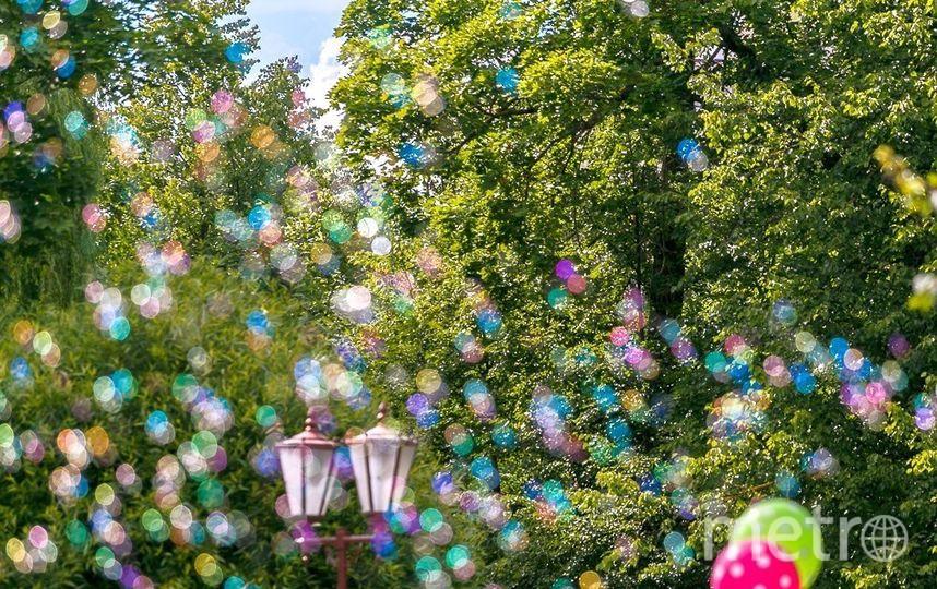 Фестиваль мыльных пузырей. Фото Предоставлено организаторами