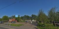 Розовый гроб спрятали в кустах в Дачном в Петербурге