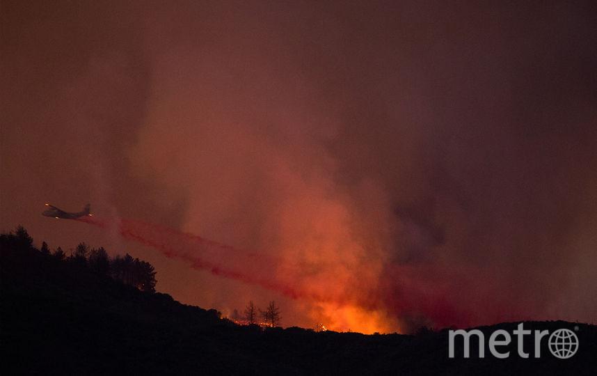 Пожар в Калифорнии не могут потушить уже больше двух недель. Фото AFP