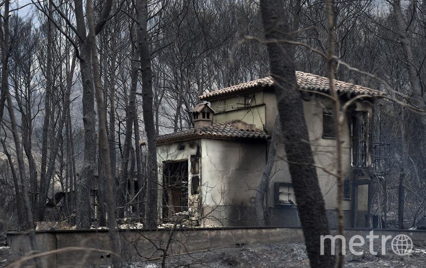 Пожар в Испании. Фото AFP
